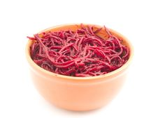 Free Salad From A Beet Stock Photography - 17264772