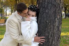 Free Groom Kissing His Bride Stock Photography - 17265742