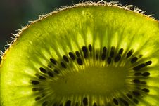 Free The Light In The Kiwi Fruit Stock Images - 17267574