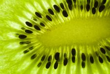 Free The Light In The Kiwi Fruit 2 Royalty Free Stock Image - 17267626