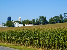 Free Amish Farm, Lancaster USA Royalty Free Stock Photo - 17269735