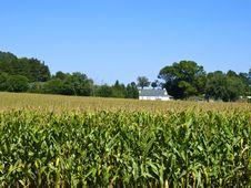 Free Amish Farm, Lancaster USA Stock Images - 17269744