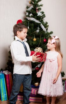 Free Girl And Boy Near A Fir-tree Stock Photography - 17269872