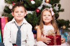 Free Girl And Boy Near A Fir-tree Royalty Free Stock Image - 17269916