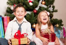 Free Girl And Boy Near A Fir-tree Stock Images - 17269924
