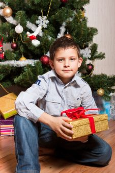 Free Boy Near A New-year Tree Royalty Free Stock Photos - 17270018