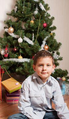 Free Boy Near A New-year Tree Stock Images - 17270024