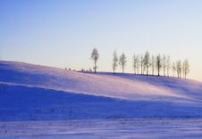 Free Winter Pink Landscape With Trees On Hill Royalty Free Stock Photos - 17271628