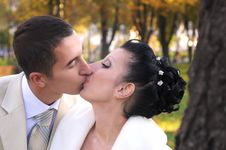 Free Kissing Couple Stock Image - 17276041