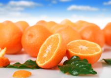 Free Fresh Orange. Royalty Free Stock Photo - 17278735