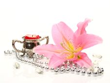 Free Pink Lily Royalty Free Stock Image - 17279466