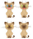 Free Four Funny Kittens Stock Photography - 17280512