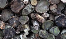 Wood Pile Of Logs Royalty Free Stock Images