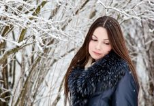 Free A Woman Is In The Winter Park Stock Image - 17289371