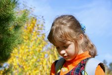 Free The Girl In The Autumn In Park Stock Images - 17289794