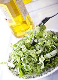 Free Lettuce Leaf Salad Stock Photo - 17290620