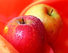Free Fresh Apple Royalty Free Stock Photos - 17291888