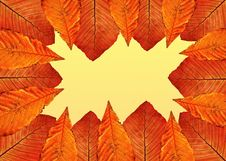Free Autumn Frame. Stock Photos - 17293053