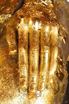 Free Buddha Hand Royalty Free Stock Photo - 17293295