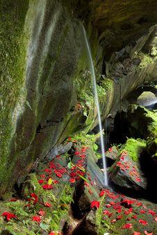 Free Waterfall Beautiful Maple Royalty Free Stock Image - 17293776