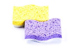 Free Sponges Royalty Free Stock Images - 17293819