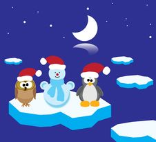 Free An Owl, A Penguin And A Snowman On The Ice Floe Royalty Free Stock Images - 17296119