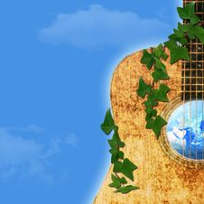 Free Guitar Royalty Free Stock Photo - 17296405