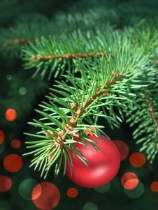 Free Fir Branch With Bauble Stock Image - 17297311