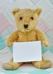 Free Teddy Bear With  Blank Card Stock Photo - 17297650