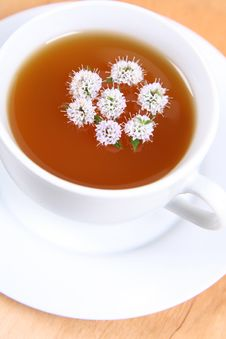 Free Tea With Flowers Of Peppermint Royalty Free Stock Photos - 17298198