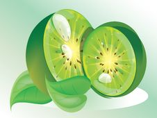 Free Kiwi Fruit Royalty Free Stock Image - 17298376
