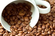 Free White Cup In Coffee Beans Royalty Free Stock Photography - 17298887