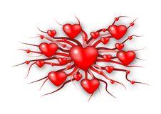 Free Hearts Royalty Free Stock Photos - 1730558