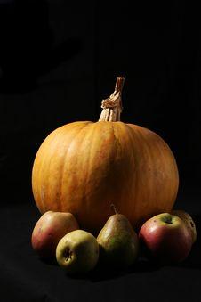 Free Still-life Vegetables Stock Photos - 1732983