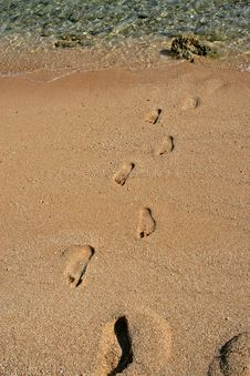 Free Footsteps On Sand Royalty Free Stock Images - 1733369