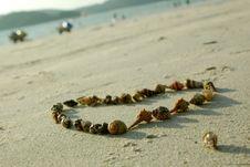 Heart From Seashells Royalty Free Stock Photo