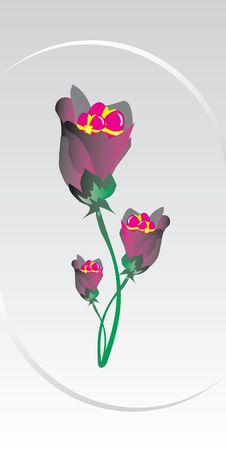 Vector, Valentine, Decoration, Ornament, Petal, Love, Illustrati Stock Photography