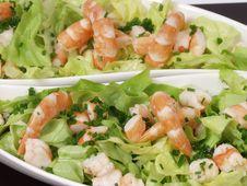 Free Salad Royalty Free Stock Photo - 1736445
