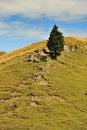 Free Mountains Landscape Royalty Free Stock Photo - 17307385