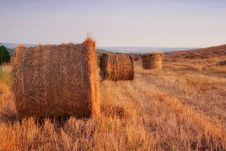 Free Golden Hay Bales In The Countryside Stock Photos - 17300843