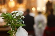 Free Wedding Royalty Free Stock Photography - 17300977