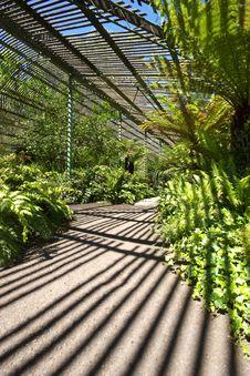 Free Garden Shadows Stock Photography - 17301692