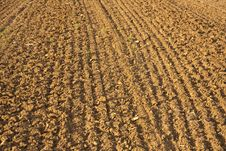 Newly Plowed Field Royalty Free Stock Photo