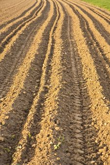 Newly Plowed Field Stock Photography