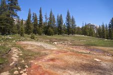 Free Soda Springs, Yosemite NP Royalty Free Stock Images - 17302229
