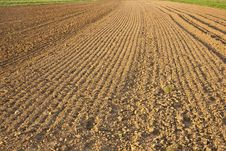 Free Newly Plowed Field Stock Photography - 17302252
