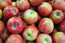 Free Apples Royalty Free Stock Photo - 17303905