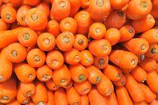 Free Carrots Royalty Free Stock Photos - 17303958