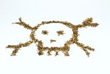 Free Skull Made Of Tobacco And Cigaratte Royalty Free Stock Photos - 17304918