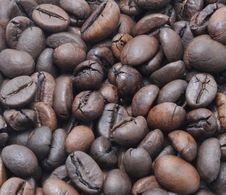 Free Grains Of Coffee Stock Photography - 17305502
